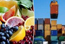 ندوة إلكترونية حول تنمية صادرات الصناعات الغذائية للسودان الخميس المقبل