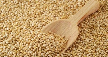 صناعة الحبوب: المشروع القومى للصوامع ساهم فى القضاء على كميات الأقماح المهدرة