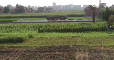 الإحصاء: 44 ألف فدان مساحة الأراضى جارى استزراعها عام 2020 وأسوان تتصدر