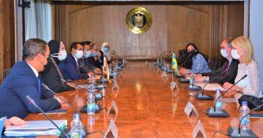 التخطيط: الإعداد لتشكيل أول مجلس أعمال مصرى سويدى وتعزيز التعاون الصناعى والتجارى