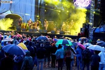 Reggaeland 2013 (51)
