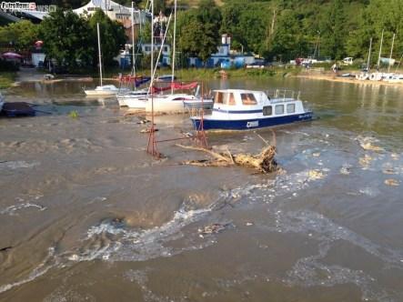 Rzeka Wisła (4)