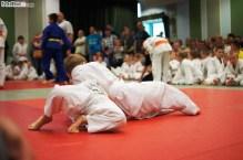 Judo SDK (16)