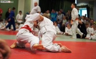 Judo SDK (17)