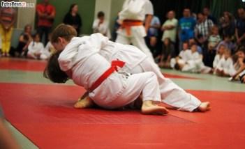 Judo SDK (18)