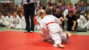 Judo SDK (8)