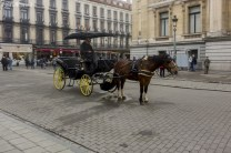 Bruksela_miasto (6)