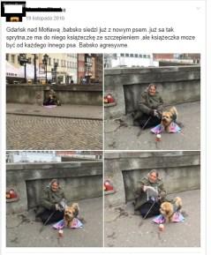 Gdańsk - nad Motławą, zrzut z facebooka