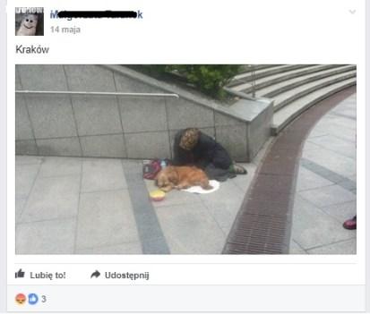 Kraków, zrzut z facebooka