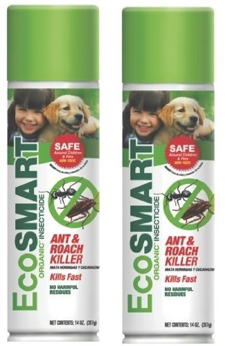 Pet Safe Ant Killer Pet Friendly Way To Get Rid Of Ants