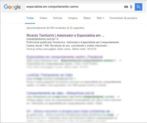 Especialista em Comportamento no Top 10 do Google Brasil