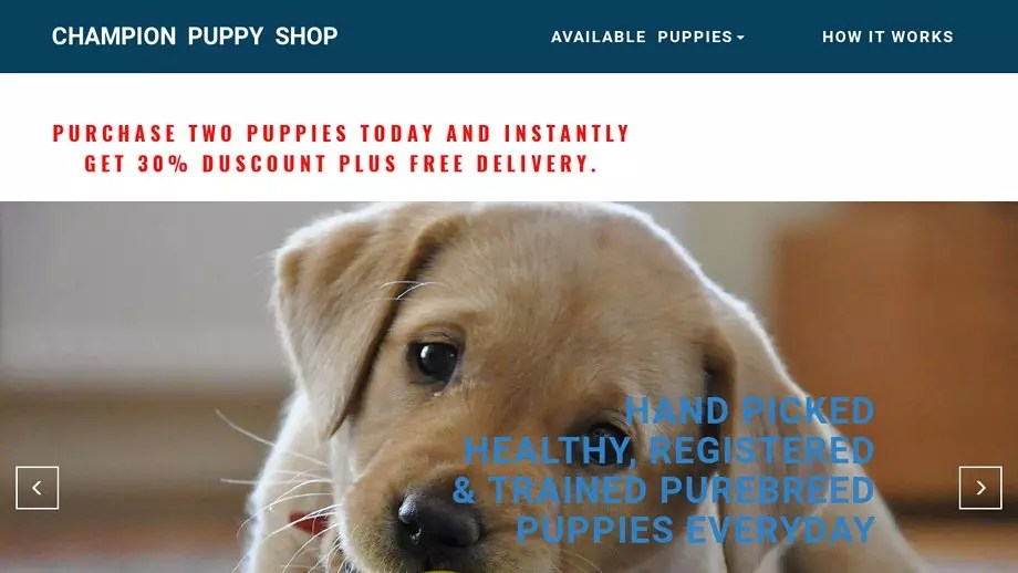 Pet Scam Website Championpuppyshopcom - What is invoice number on receipt online pet store