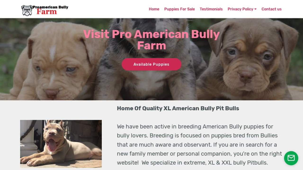 Puppy Scammer List Website: Proamericanbullyfarm com Home