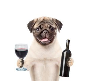 Dog holding a bottle of red wine and wineglass