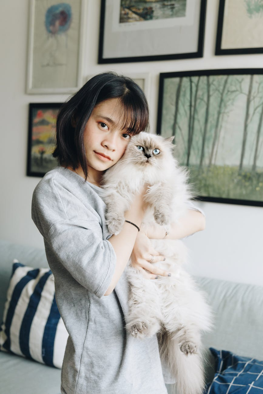 woman hugging himalayan cat