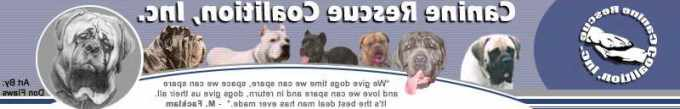 Az Mastiff Rescue