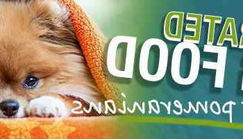 Best Dog Food For Pomeranian