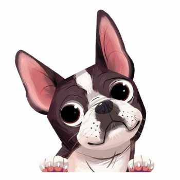 Boston Terrier Decals For Cars