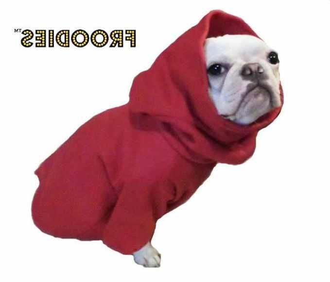 Boston Terrier Jacket