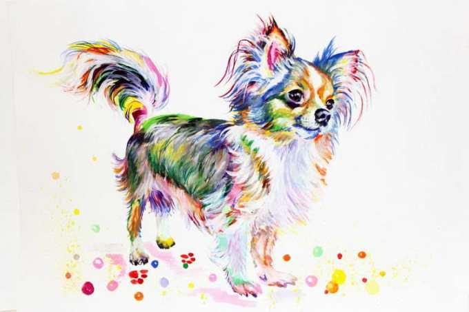 Chihuahua Art