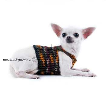 Chihuahua Harness Vest