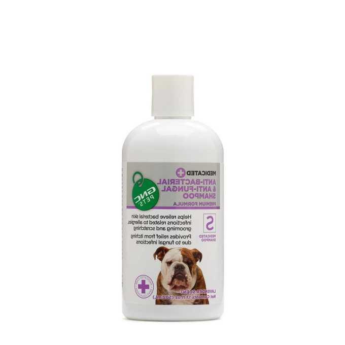 Chihuahua Shampoo