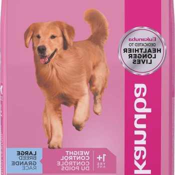 Eukanuba Labrador Retriever Formula Dog Food
