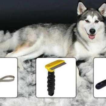 Dog Brush For Husky