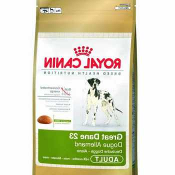 Dog Food For Great Dane