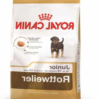 Dog Food For Rottweiler Puppy