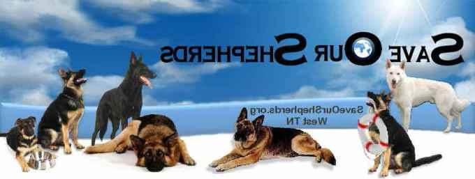 East Tn German Shepherd Rescue