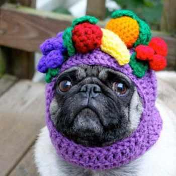Etsy Pug