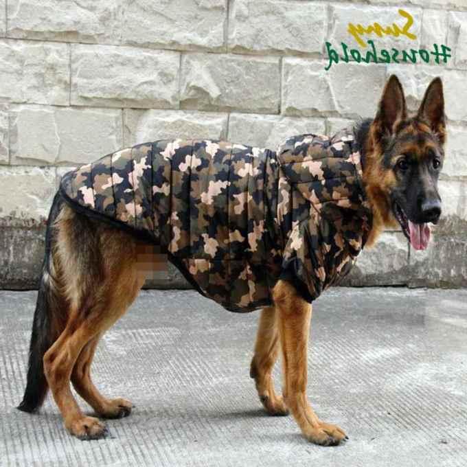 German Shepherd Dog Clothes