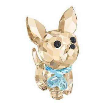 Crystal Chihuahua