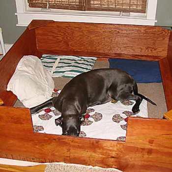 Great Dane Whelping Box