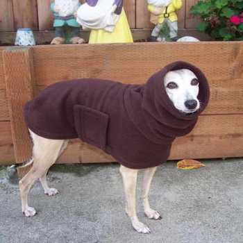 Greyhound Dog Coat
