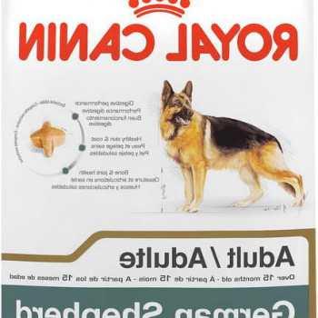 Healthy Dog Food For German Shepherd