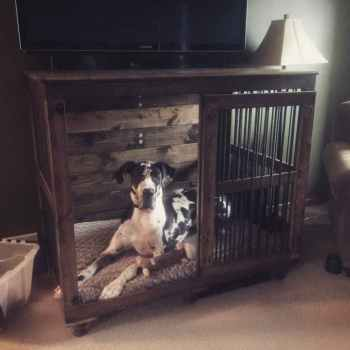 Kennel For Great Dane