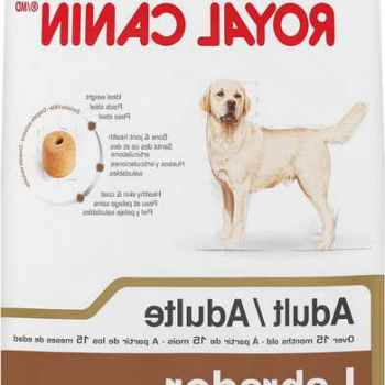 Labrador Dog Food