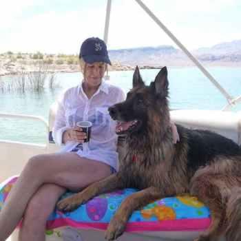 Las Vegas German Shepherd Rescue