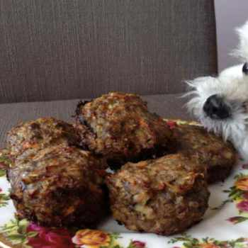 Dog Food Recipe Ground Beef