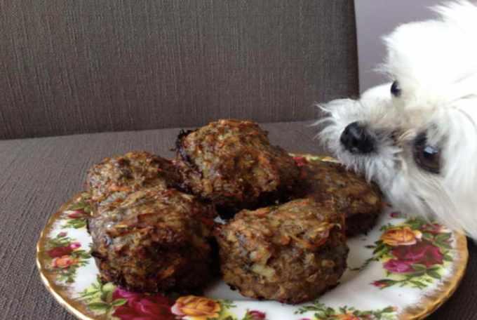 Dog Food Recipe Ground Beef