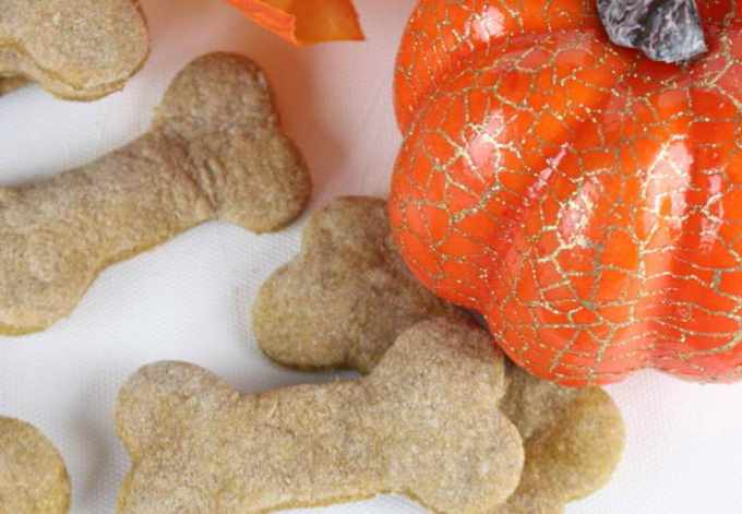 Dog Treats Homemade Pumpkin