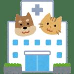 認定動物看護師資格試験・受験可能な大学