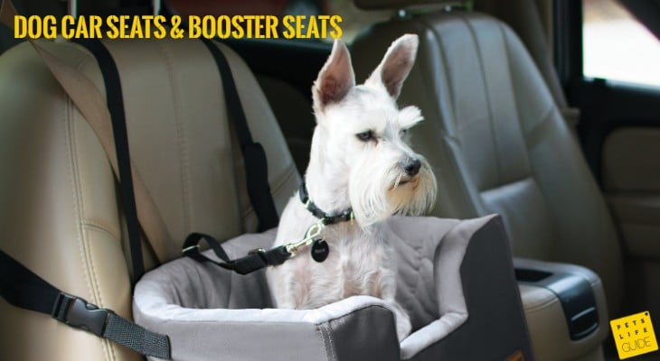 Car Seats and Booster Seats For Dogs