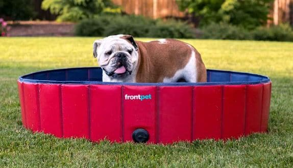FrontPet Foldable Dog Pool Pet Bathing Tub, Kiddie Pool