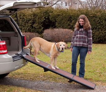 Pet Gear Tri-Fold Ramp review