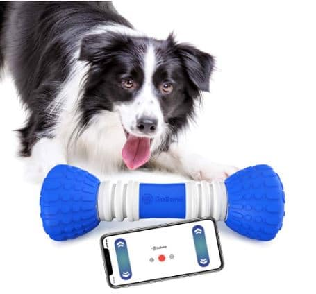 GoBone Interactive App-Enabled Smart Bone for Dogs and Puppies review