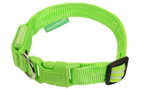 Illumiseen LED Dog Collar review