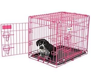 Aspen Pet Puppy 2-Door Training Retreat Crate review